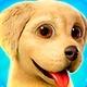 Игры Про Собак