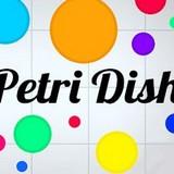 Игра Чашка Петри | PetriDish.pw