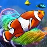 Игра Морские Рыбы 2