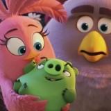 Игра Злые Птички: Наглый Свин