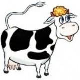 Игра Быки и Коровы