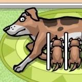Игра Мама Собака