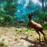 Игра Охотник 3Д