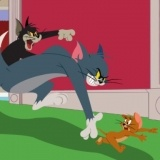 Игра Том и Джерри: В Погоне за Джерри
