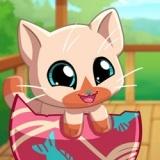Игра Мои Карманные Питомцы: Котенок