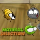 Игра Естественный Отбор