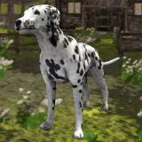 Игра Симулятор Собаки 3Д