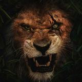 Игра Король Лев 2019 Пазл: Шрам