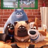 Игра Тайная Жизнь Домашних Животных 2: Друзья