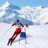 Игра Симулятор Лыжного Слалома