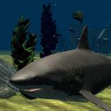 Игра Большая Белая Акула