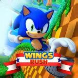 Игра Соник: Крылатый Рывок
