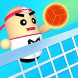 Игра Удивительный 3Д Волейбол