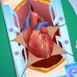 Хирургия Шунтирования Сердца