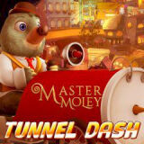 Игра Мастер Морли: Туннель Дэш