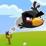 Игра Сумасшедшие Птицы