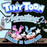Игра Tiny Toon Adventures 2 - Trouble In Wackyland