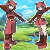 Игра Pokemon Team Magma Edition