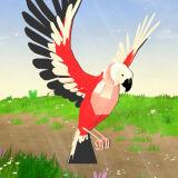 Игра Симулятор Попугая